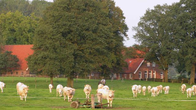 'Explosieve toename leegstaande boerderijen'