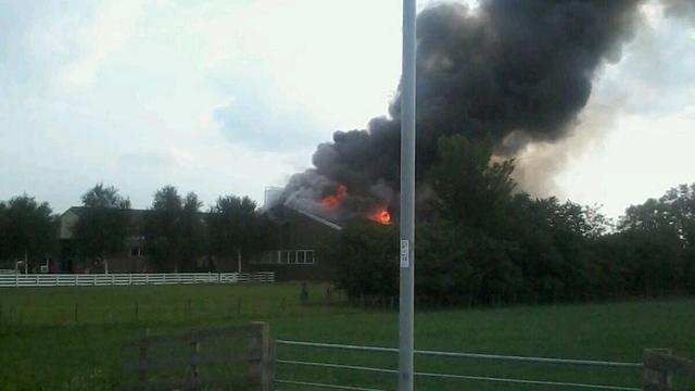 Brand verwoest veeschuur in Noord-Hollandse Hoogwoud