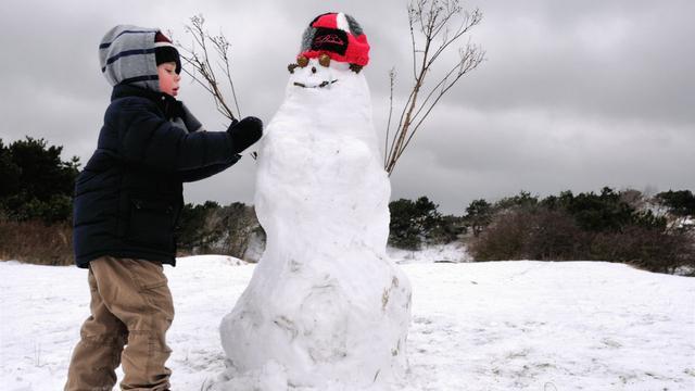 Amerikaan krijgt patent op techniek sneeuwpop bouwen