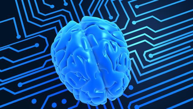 'Menselijke geest niet in delen hersens opgeslagen'