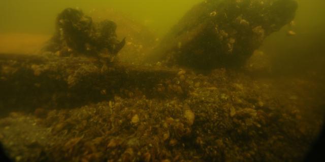Scheepswrak gevonden in IJssel bij Kampen