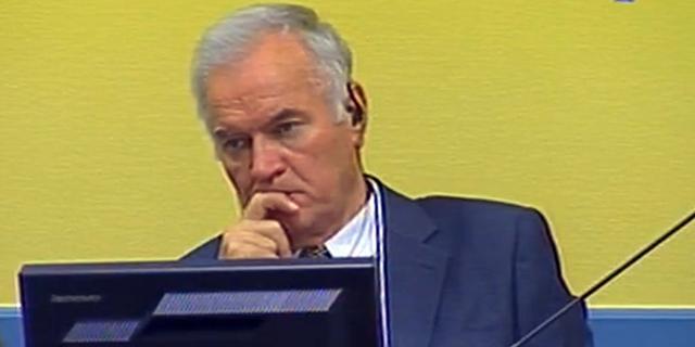 Neef Mladic bekent schuld aan verbergen oom