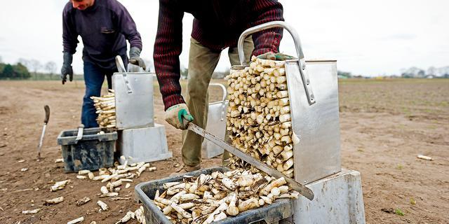 125 miljoen euro voor getroffen boeren na sancties Rusland