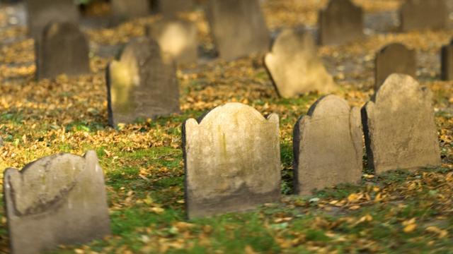'Graven slachtoffers pest in Londen gevonden'