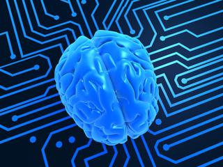 'Simuleren van volledig menselijk brein pas over jaren mogelijk'