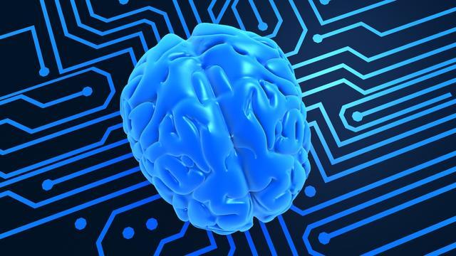 MS ontstaat wellicht in hersenen