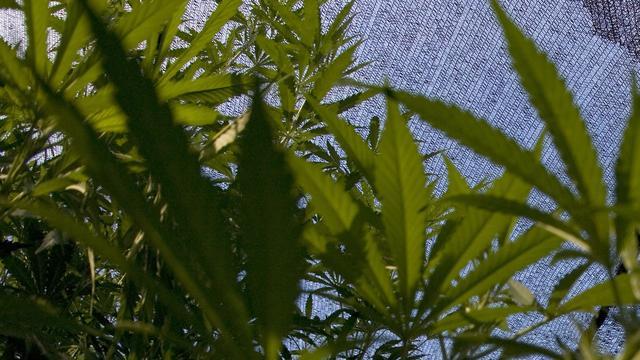 Elektronische joint zonder cannabis ontwikkeld