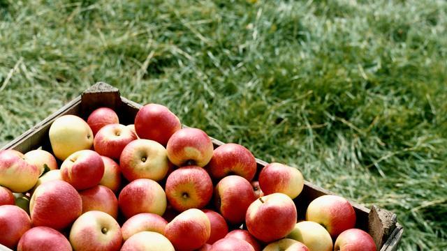 Appel is meest vervuilde fruitsoort