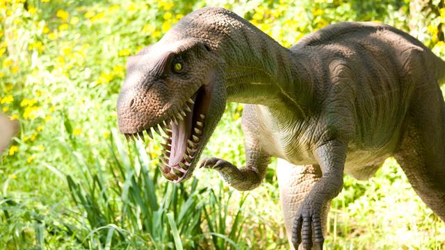 Gevederde dinosauriërs waren uitzondering