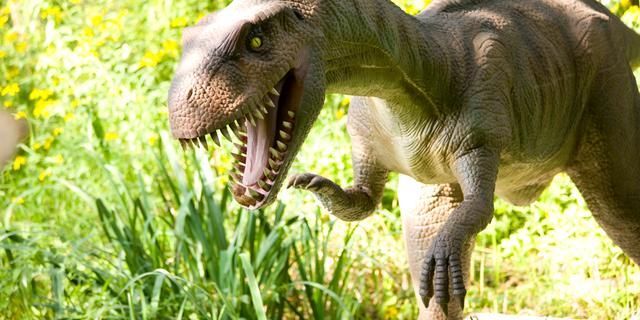 'Wereld stond in brand toen dinosaurus uitstierf'