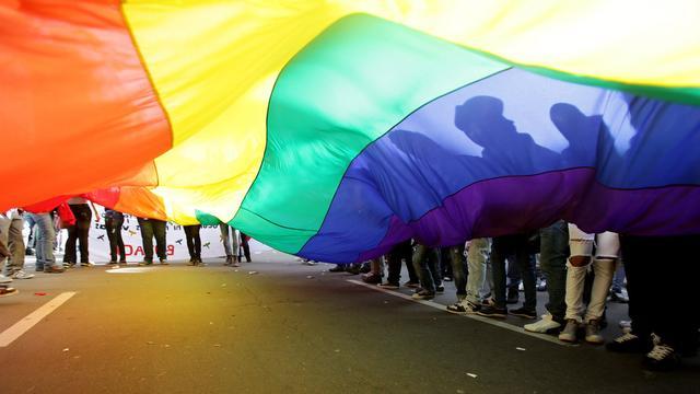 Raad van State kritisch over homovoorlichting