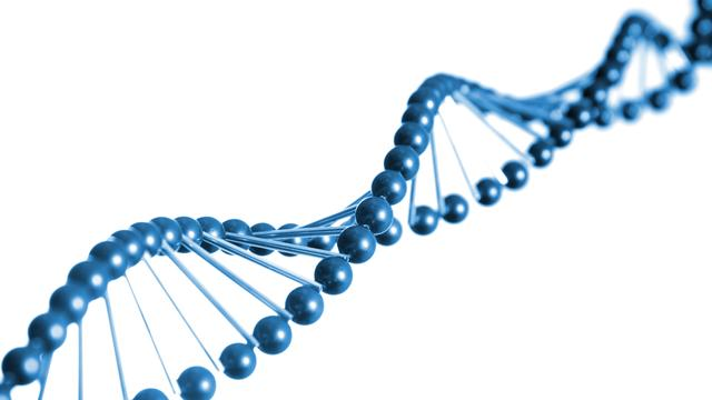 Herschrijfbaar DNA-geheugen als data-opslag