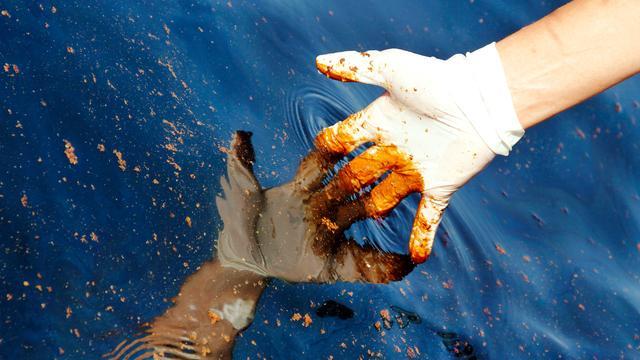 'BP verliest fortuin in Golf van Mexico'