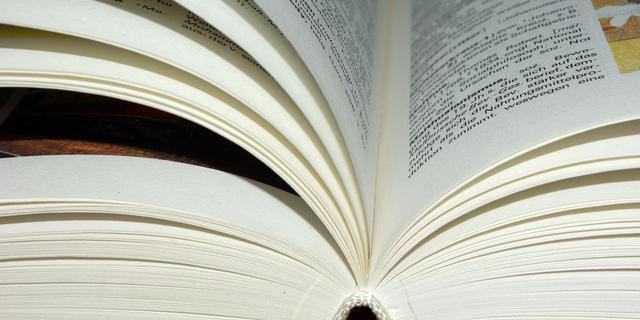 De gouden leestip: 'Dit boek liet me zien hoeveel er mogelijk is'