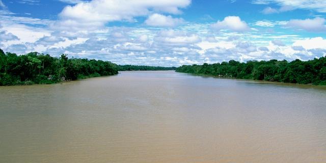 Zeetemperatuur voorspelt branden Amazone