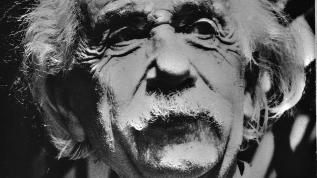 App toont foto's van brein Einstein