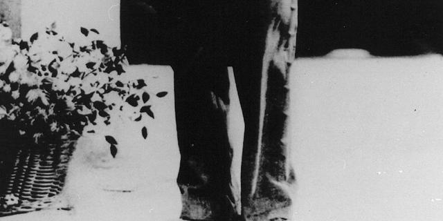 Charlie Chaplins wandelstok geveild
