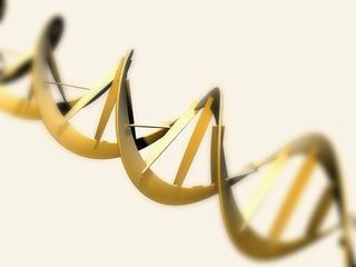 'Dit is een gigantische doorbraak in genoombewerking'