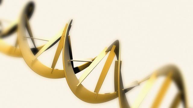 Mannen-DNA in hersenen van vrouwen gevonden