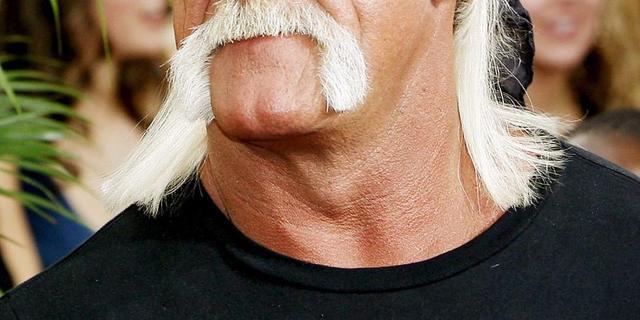 Hulk Hogan eist 100 miljoen om sekstape
