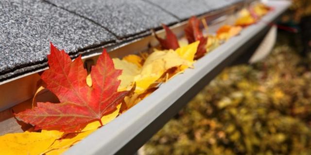 8 tips voor de herfst