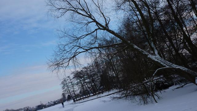 Plaatselijk wit door sneeuwval