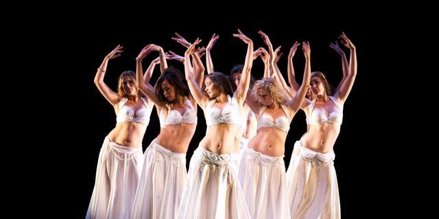 Realityserie over Het Nationale Ballet