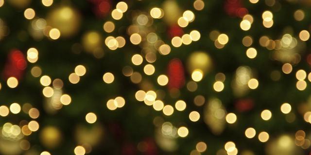 Deventer krijgt weer metershoge kerstbomen