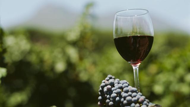 EU-subsidies voor wijnpromotie missen effect