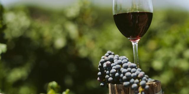 Schimmels op druiven zorgen voor variatie binnen wijngaard