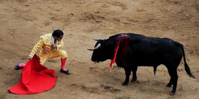 Nederlander betoogt in Spanje tegen stierenvechten