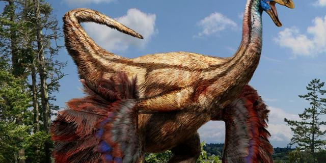 Dinosauriër met 'opvouwvleugels' opgegraven