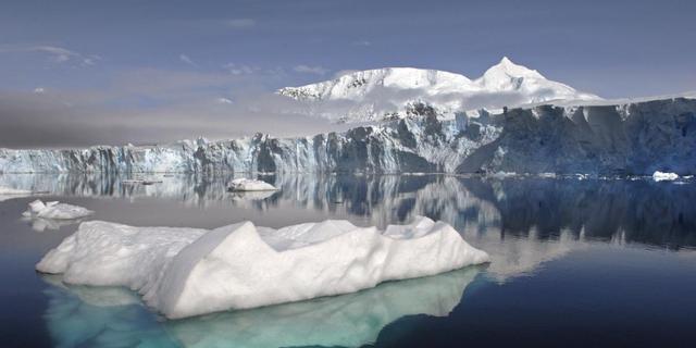 Bot-etende zeewormen ontdekt rond Antarctica