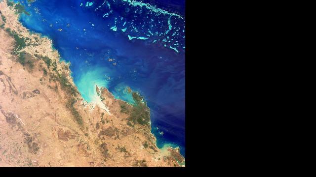 Koraal Great Barrier Reef blijft ernstig bedreigd