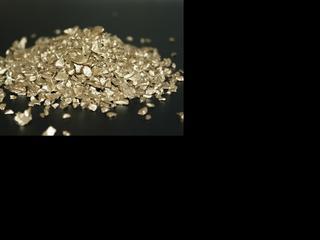 Organisme kan mogelijk worden ingezet bij goudwinning
