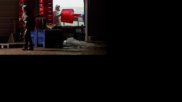 Verdachte vleesverwerker stevent af op faillissement
