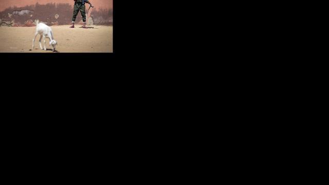 Hennis noemt situatie legerkamp Gao 'acceptabel'