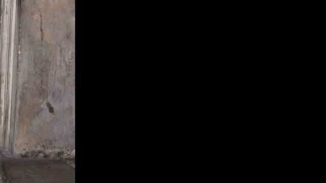 Kate Moss gebruikt dubbelganger voor shoot