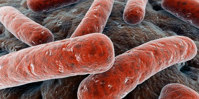 Nieuw centrum voor patiënten met vleesetende bacterie
