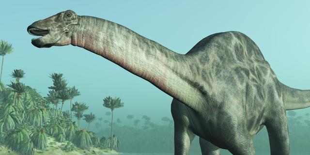 'Bloedresten aangetroffen in dinosaurusfossielen'
