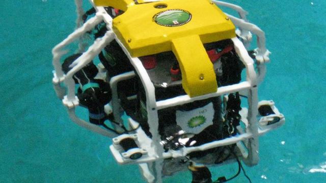 Wetenschappers halen geld op voor koraalherstelrobot
