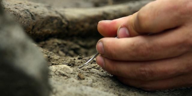 Houten restanten ijzertijd ontdekt in Zweden
