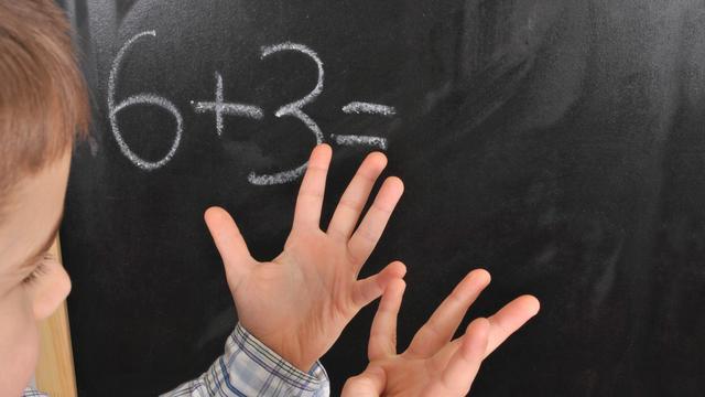 Wiskunde leren is kwestie van oefenen