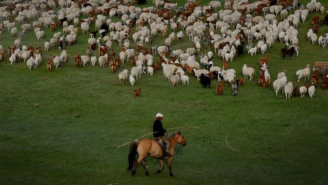 Mongolië zwaar getroffen door teruggelopen vraag naar grondstoffen