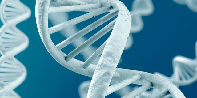 Wetenschappers filmen 'dansende eiwitten'