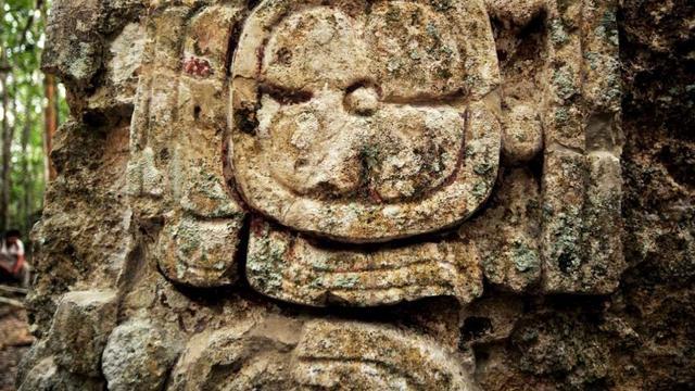 Grote Mayastad ontdekt in jungle Mexico