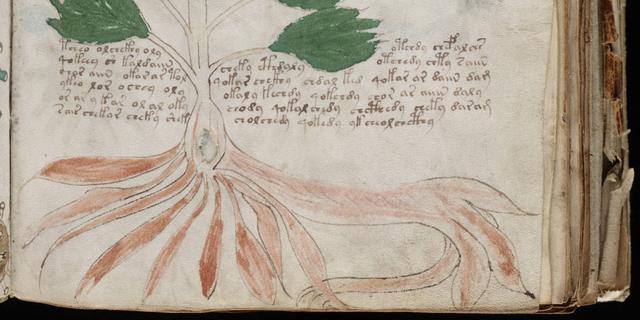 'Mysterieus Voynichmanuscript bevat echte taal'