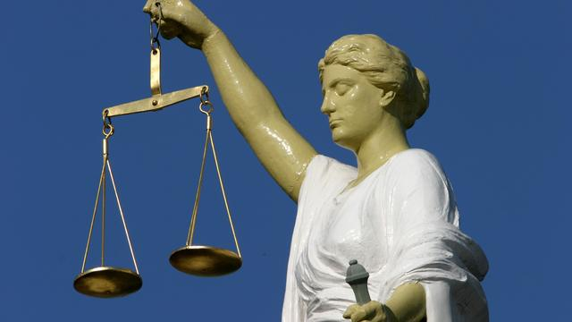 Lagere straf oud-voorzitter pedovereniging Martijn