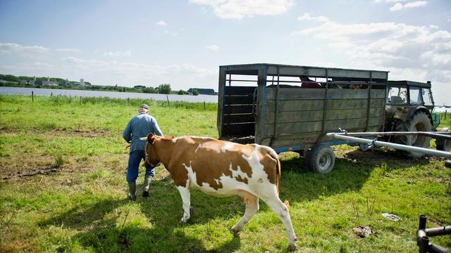 Nederlandse boeren verdienen meer