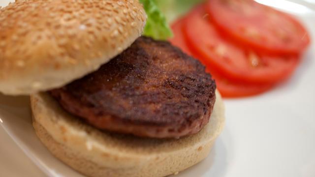 Weer miljoeneninvestering voor bedrijf dat kweekburger ontwikkelt